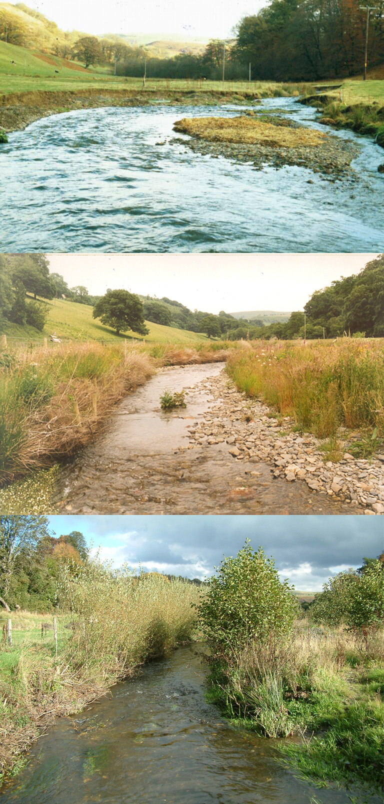 The Clywedog, a stream in the upper Wye catchment before restoration in WHIP, one and four years after work. In the lower photo the stream is fully restored and capable of supporting good numbers of juvenile salmon and trout.