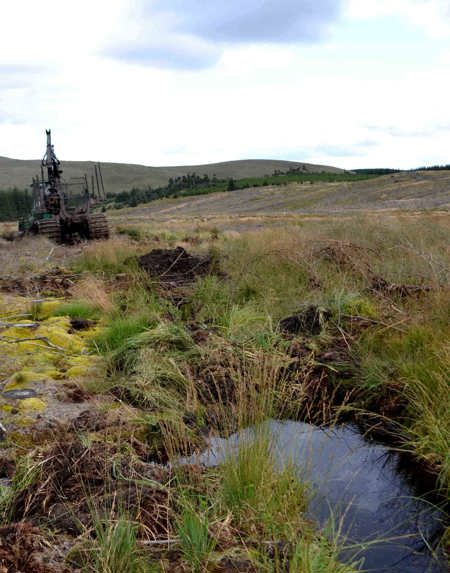 Blocking forestry drains to restore upland bogs in the upper Irfon catchment was an important part of our EU Life+ funded ISAC project