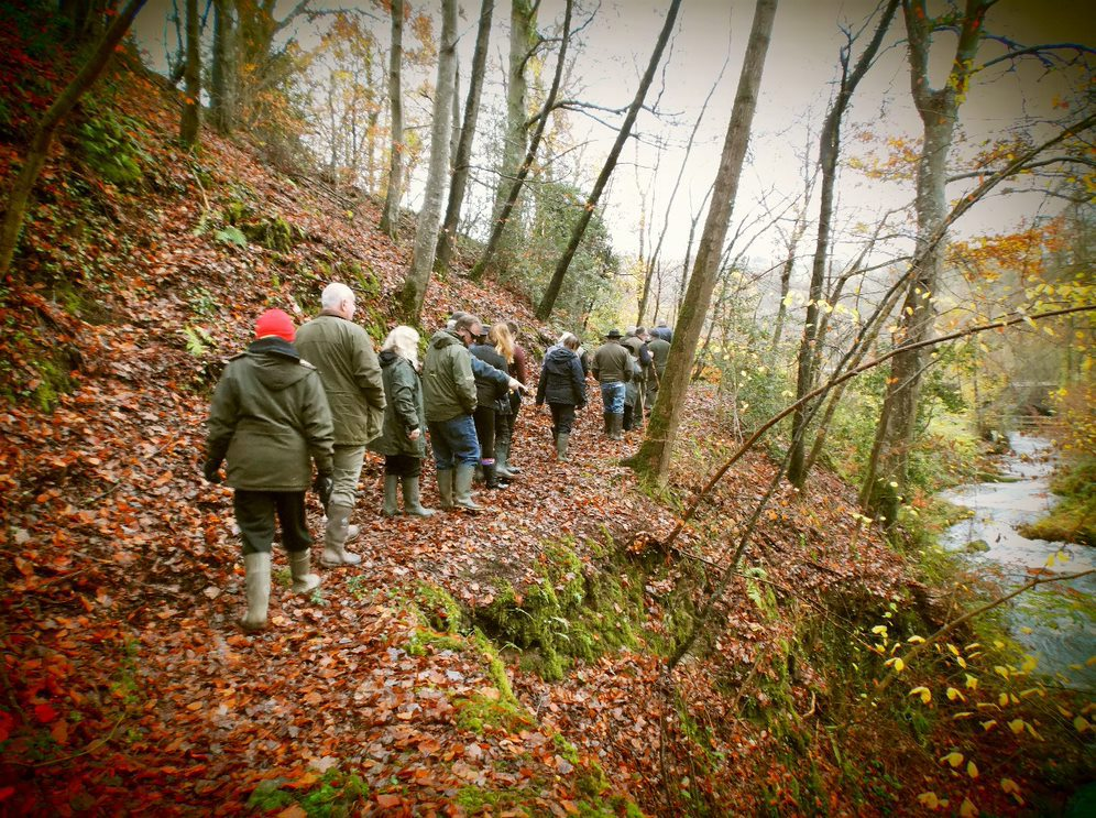 The Autumn River Walk is on Sunday 25th November.