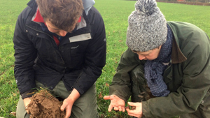 farm advice soil testing