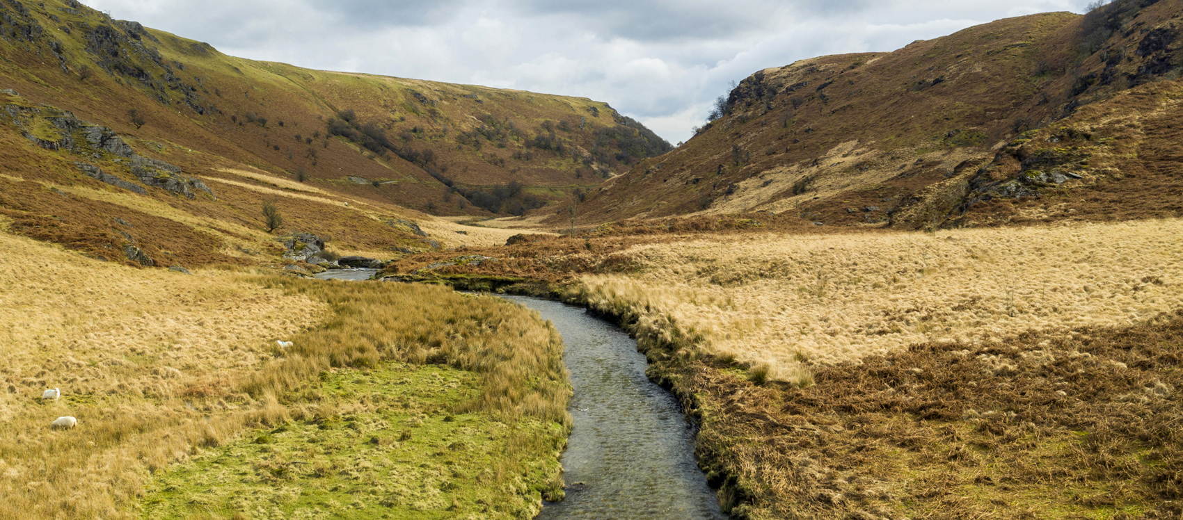 Restoring Water Quality in the Upper Wye & Irfon